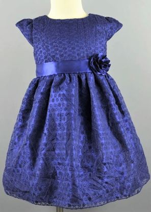 Picture of Princess Dress