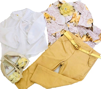 Picture of Baby Girls Fashion Kids Clothing Set